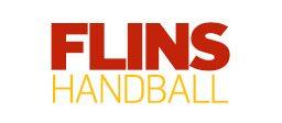 Logo-flins-v2