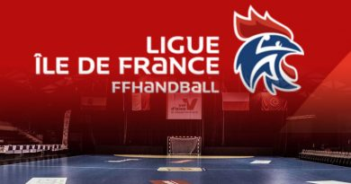 handball-stage-ligue-ile-de-france-eaubonne-fontainebleau